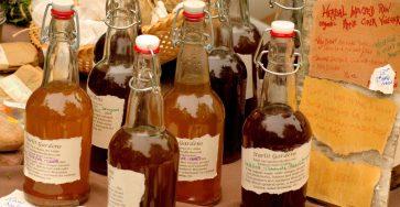 apple cider vinegar to get rid of drain flies