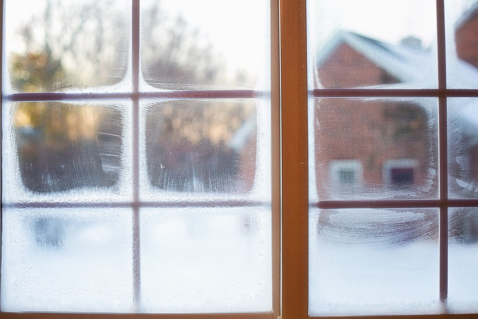 drain flies die in winter if you see the cold season's signs on the window