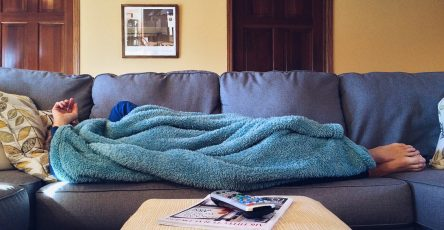 Bed Bugs Hide in Couches