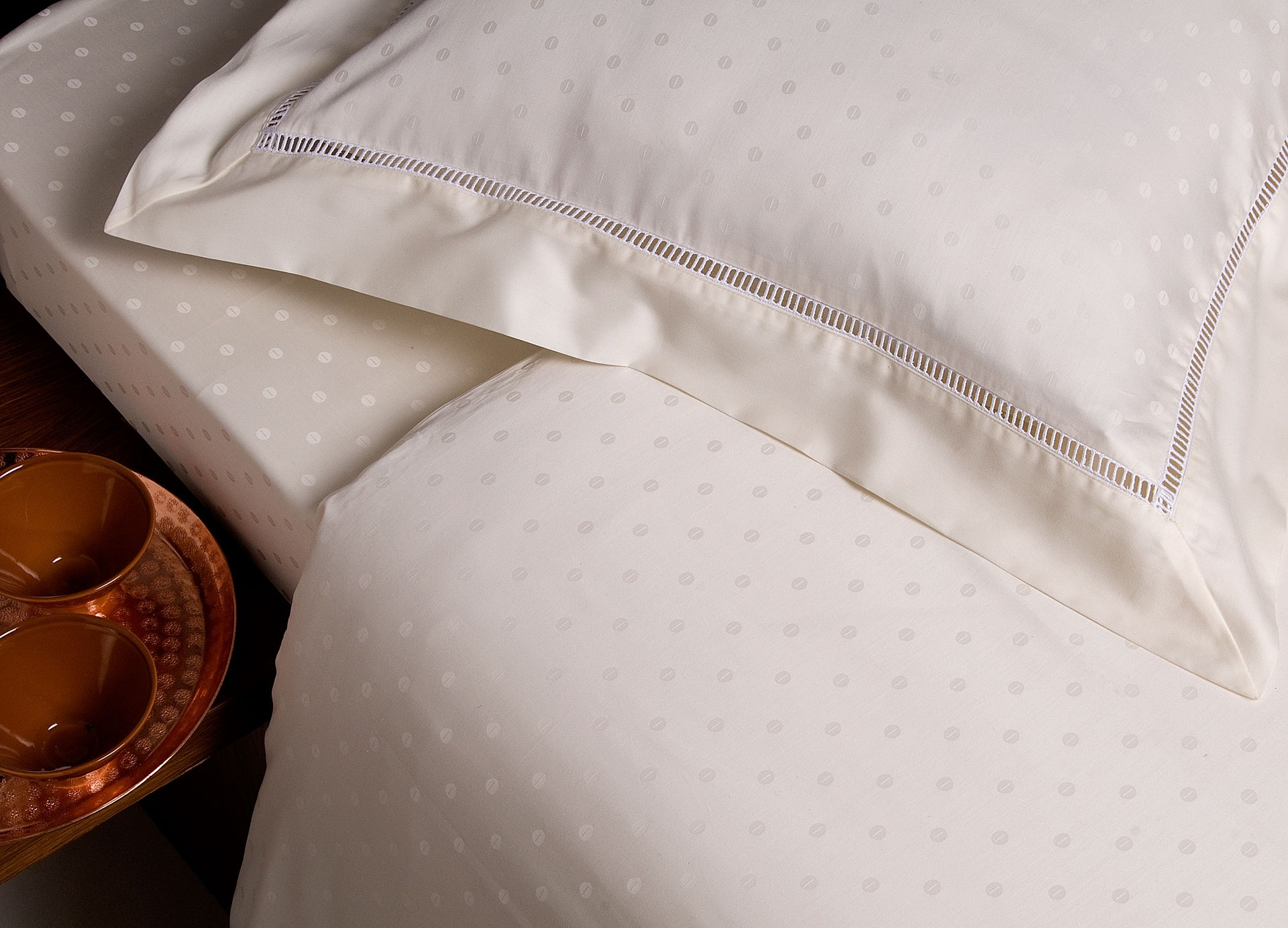 bed bugs in a mattress